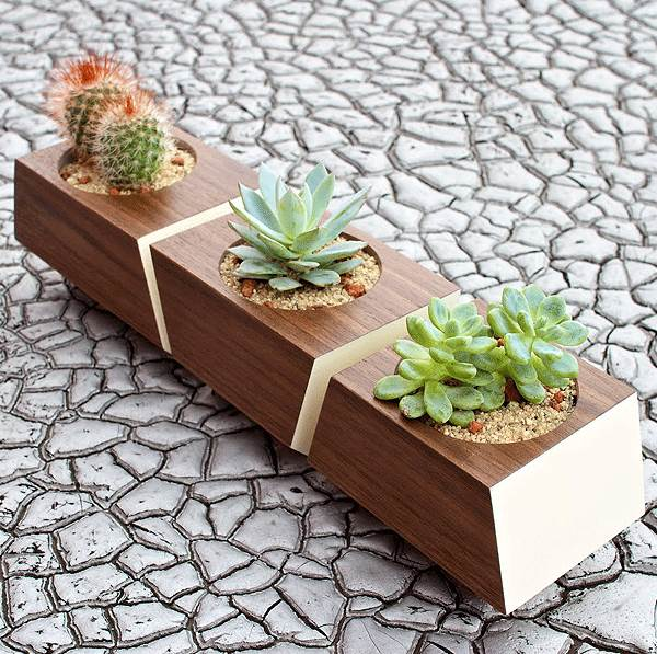 403 forbidden for Wooden cactus planter